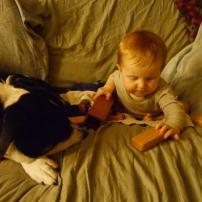 dog friend play