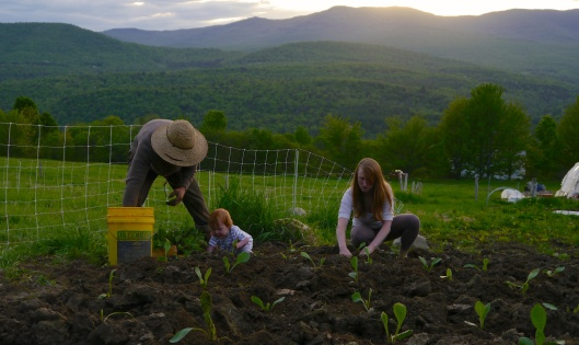 Family Planting