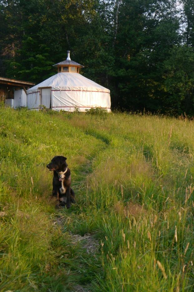Pebble and Yurt