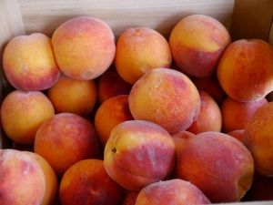 Fresh PA Peaches