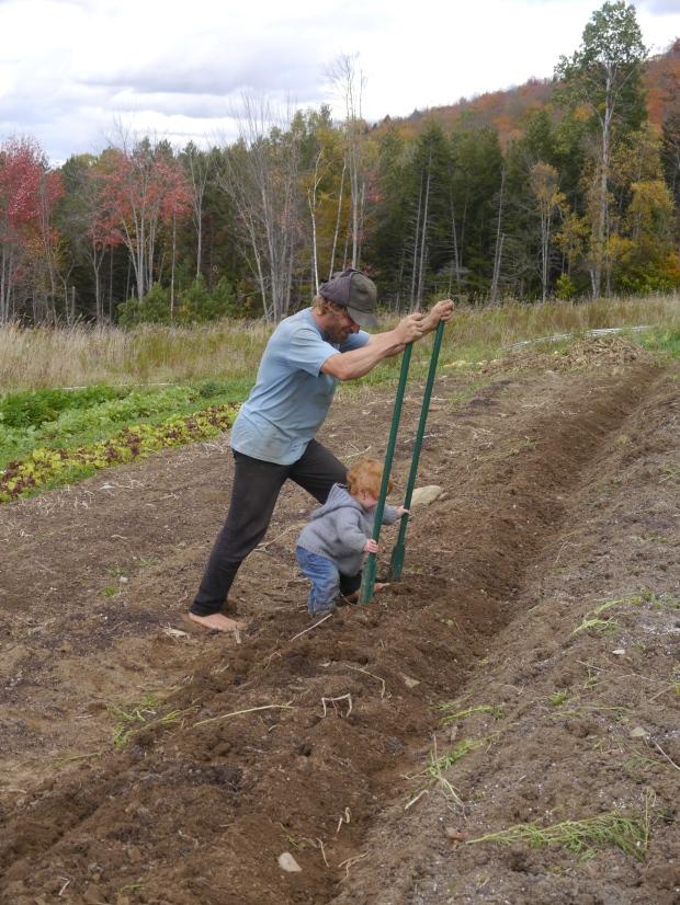 October: Prepping garlic beds with the broadfork