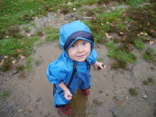 discovering puddles