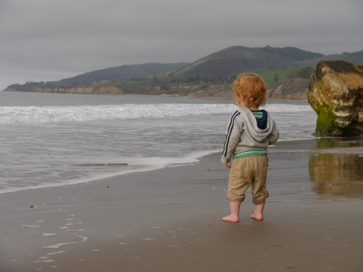 Waylon meets the waves at El Capitan State Beach
