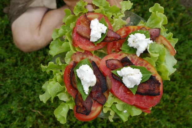 BLT on lettuce