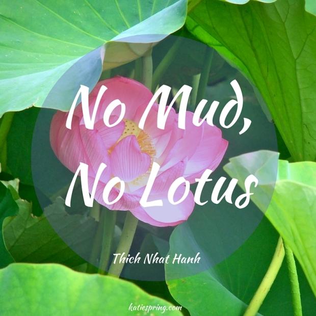 No Mud,No Lotus